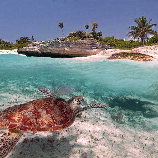 5 destinations vacances cet hiver en fonction de votre budget