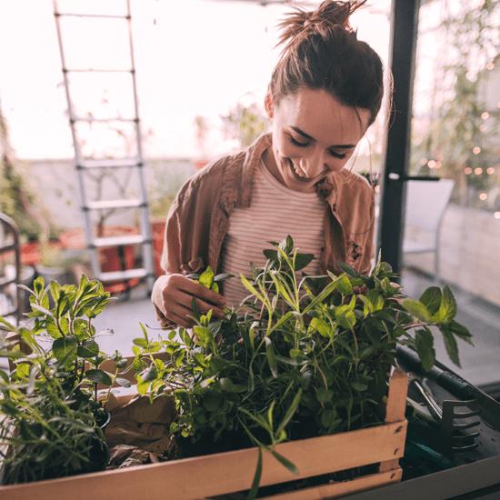 Comment cultivez-vous votre potager?